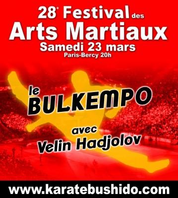 Bulkempo in Paris-Bercy Festival 2013