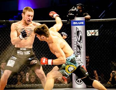 George Pacurariu, hits again in MMA