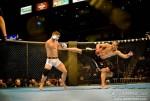 Kempo Champion hits again!