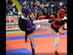 The 9th IKF World Kempo Championships, 2012