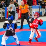 The 16th IKF World Kempo Championships 2019 (Semi-Kempo)