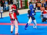 The 16th IKF World Kempo Championships 2019 (Semi-Kempo)